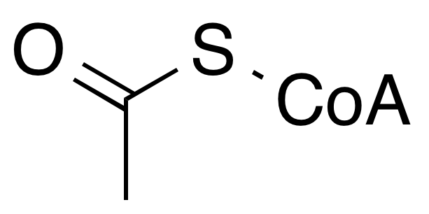 文件:Acetyl co-A wpmp.png