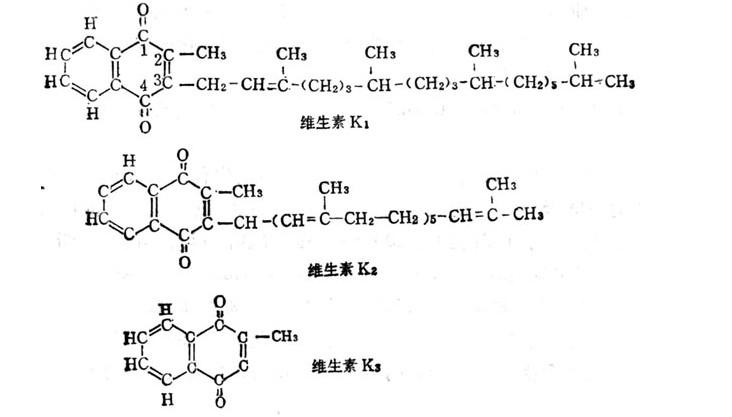 维生素K123.jpg