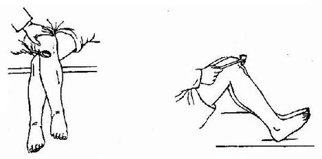 膝腱反射检查法
