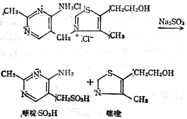 维生素B1经Na2SO3分解为嘧啶和噻唑
