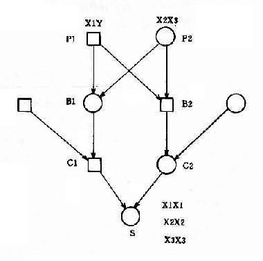 舅表兄妹婚配中X连锁基因传递图解