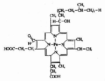 细胞色素C的辅基与酶蛋白的联接方式