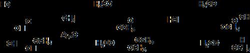 珀迪-欧文甲基化法