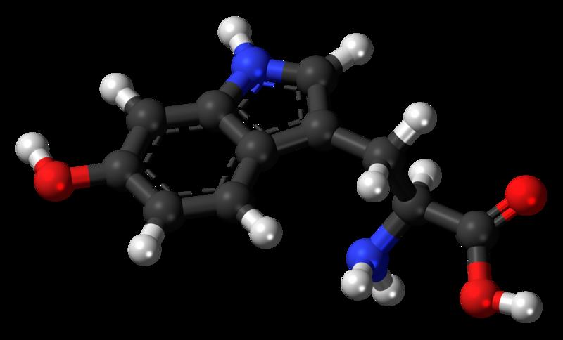 文件:5-Hydroxy-L-tryptophan-3D-balls.png