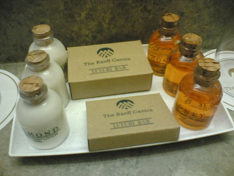 文件:Banff Centre lotion and shampoo.jpg
