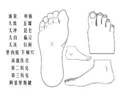 互动版人体穴位图足部.jpg