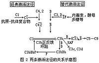 Bk81n.jpg