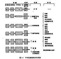 Bk8v7.jpg