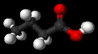 酪酸的分子含有四个碳原子