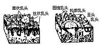 Bki80.jpg